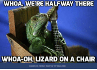WHOA, WERE HALFWAY THERE  WHOA-OH, LIZARD ON A CHAIR  SHARED ON IM NOT RIGHT IN THE HEAD.COM Bet you sang that 😁😂😃