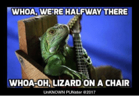 WHOA, WERE HALFWAY THERE  WHOA-OH,LIZARD ON A CHAIR  UnKNOWN PUNster @2017 I liked this song from the gecko. #UnKNOWN_PUNster
