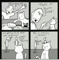 Cats, Friends, and Life: Whoa! What the  Im getting  rid of that  Cat o morrow!  Sweetie  ou over  ting  reac  That's it!  our e  DONE  She is totally  use less! I wasn't ready.... lastpost ° ° ° Created by @lunarbaboon ° ° ° ° ° ° ° ° life truth love truelove friends realfriends sad whyyoudothis fuckmylife friendinneed shitjustgotreal clumsy sacrifice feels feelsbadman depressed comics guilttrip gameofthrones cats catsofinstagram webcomic cashmeoutsidehowboutdat instacomics comicsofinstagram pepe useless why bye