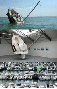 Whoever owns this boat is a master troll...: Whoever owns this boat is a master troll...