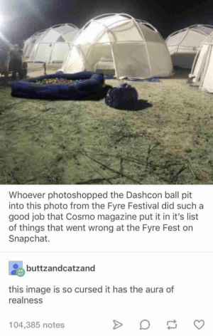 fine These 21 Tumblr Posts Are The Best Of What The Internet Has To Serve Up: Whoever photoshopped the Dashcon ball pit  into this photo from the Fyre Festival did such a  good job that Cosmo magazine put it in it's list  of things that went wrong at the Fyre Fest on  Snapchat.  buttzandcatzand  this image is so cursed it has the aura of  realness  104,385 notes fine These 21 Tumblr Posts Are The Best Of What The Internet Has To Serve Up