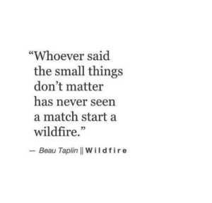 "Beau: ""Whoever said  the small things  don't matter  has never seen  a match start a  wildfire.""  - Beau Taplin 