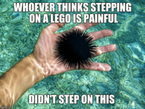 Lego, Don, and Bite: WHOEVER THINKS STEPPING  ON A LEGO IS PAINFUL  DIDNT STEPONTHIS Dont worry, it doesn bite