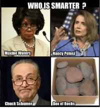 Memes, Quiz, and Test: WHOIS SMARTER  Maxine Waters  Nancy Pelosi  Chuck Schumer  Box of Rocks Test your knowledge of current events with this quiz!