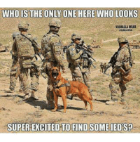 Military, Only One, and Who: WHOIS THE ONLY ONE HERE WHO LOOKS  VALHALLA WEAR  SUPEREXCITED TO FINDSOME IEDS?