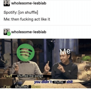 Fucking, Spotify, and Songs: wholesome-lesbiab  Spotify: Lon shuffle  Me: then fucking act like it  3 wholesome-lesbiab  ie  shuffled the songs  you didn't shuileshit  I ve shuffled them