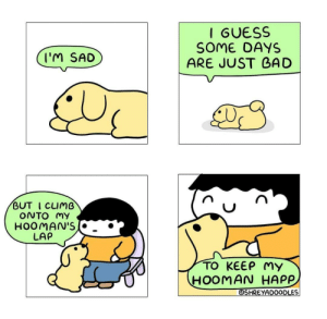 Wholesome pets: Wholesome pets