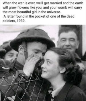 Wholesome soldier: Wholesome soldier
