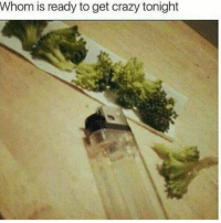Crazy, Friend, and Get: Whom is ready to get crazy tonight <p>u forgot to take off the stems my friend</p>