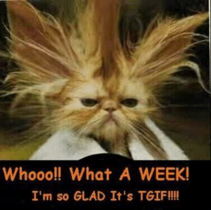 Make meme with Funny Tgif Clipart: Whooo!! What A WEEK!  I'm so GLAD It's TGIF!!! Make meme with Funny Tgif Clipart