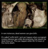 """Show me that you guys want this new scary video and I'll post it right now! 🤓: whore.ore  In rare instances, dead women can give birth.  It's called """"coffin birth,"""" and can happen when a pregnant  corpse releases gas while decomposing, that expels the  dead fetus out. This can happen within 48-72 hours of  the moms death. Show me that you guys want this new scary video and I'll post it right now! 🤓"""