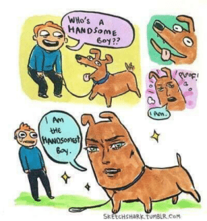 IT IS I! by getshmoney MORE MEMES: WHo's A  HANDSome  Goy??  Arm  Am  tMe  Bay  SkEtCHSHaRk tuMBLR.CoM IT IS I! by getshmoney MORE MEMES
