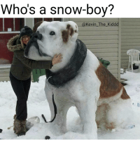 Awe doggo Pupper Ha ha. I'm weak flatlined dead pettypost nochill teamnoharmdone noharmdone: Who's a snow-boy?  @Kevin The Kiddd Awe doggo Pupper Ha ha. I'm weak flatlined dead pettypost nochill teamnoharmdone noharmdone