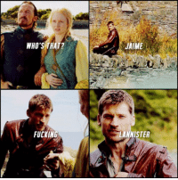 Memes, Jaime Lannister, and 🤖: WHO'S THAT?  FUCKING  JAIME  LANNISTER Best introduction ever