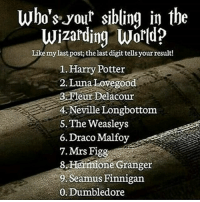 Dumbledore, Gryffindor, and Harry Potter: who's your sibling in the  Wizarding World?  Like my last post the last digit tellsyour result!  l. Harry Potter  2. Luna Lovegood  Fleur Delacour  4 eville Longbottom  The Weasleys  6. Draco Malfoy  7. Mrs Figg  8 Hermione Granger  9 Seamus Finnigan  O. Dumbledore Like my recent picture and see the last digit find out who your sibling in the wizarding world is! 💓 Comment down below! 😍💖 harrypotter thechosenone theboywholived hermionegranger ronweasley gryffindor bestfriends dracomalfoy theboywhohadnochoice slytherin wizard hogwarts ministryofmagic jkrowling harrypotterfilm harrypottercast harrypottercasts potterheads potterheadforlife harrypotterfan harrypotterfans harrypotterfact harrypotterfacts fredweasley georgeweasley danielradcliffe rupertgrint emmawatson