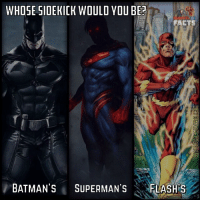 Batman, Facts, and Memes: WHOSE SIDEKICK WOULD YOU BE?  FACTS  BATMAN'S  SUPERMAN'S  FLASH S Who's sidekick would you rather be? Batman's, Superman's, or The Flash's? Comment below who you would pick to be your mentor!💥⬇️ - Personally I would choose being a speedster. Batman's training for the Robins is intense and extremely physically demanding. Plus as a speedster I can complete ordinary tasks in nearly a second depending on my speed. My reaction time would be better than anything you could think if eventually. I would also have all of the Flashes as my mentor. I also have an unlimited and unstoppable power source AKA The Speedforce. It's the ultimate dream.⚡️ - Idea was taken from @facts_of_heroes! He's got an amazing account go give him a follow!👍🏼 - sidekicks batman superman theflash brucewayne clarkkent barryallen detectivecomics dccomics dcuniverse dcextendeduniverse dctvuniverse dcentertainment dc dcu dceu dctv marveldcfacts_
