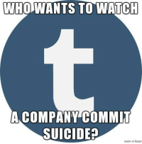 Memes, Suicide, and Watch: WHOWANTS TO WATCH  A COMPANY COMMIT  SUICIDE? Next couple weeks should be interesting via /r/memes https://ift.tt/2ARaf20
