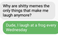 shitty: Why are shitty memes the  only things that make me  laugh anymore?  Dude, I laugh at a frog every  Wednesday