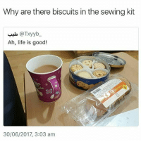 Life, Lol, and Memes: Why are there biscuits in the sewing kit  alo @Txyyb  Ah, life is good!  .8  30/06/2017, 3:03 am Lol 😂😂😁 persianmeme persianmemes persianvine persianfun persianfunny instapersia instapersian iran iranian instairan instairanian fars farsi khandedar persianmen persianwomen khande aftabe tahdig tahdeeh persiangirls persianproblems persianlife tehranimage persianpranks persian persionality persianinstagram iran