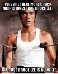 Bruce Lee: WHY ARE THERE MORE CHUCK  NORRIS JOKES THAN BRUCE LEE  BECAUSE BRUCE LEE IS NO JOKE