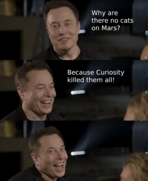 Nice: Why are  there no cats  on Mars?  Because Curiosity  killed them all! Nice