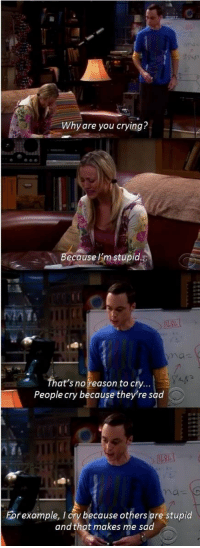 <p>Classic Sheldon Cooper.</p>: Why are you crying?  ecause Im stupid  That's noreason to cry...  People cry because they're sad  rexample, I ory because others are stupid  and that makes me sad <p>Classic Sheldon Cooper.</p>