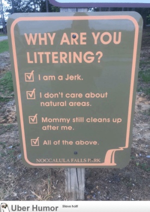 Tumblr, Uber, and Blog: WHY ARE YOU  LITTERING?  VIama Jerk.  I don't care about  natural areas.  Mommy still cleans up  after me.  All of the above.  NOCCALULA FALLS PARK  Uber Humor  Steve holt! failnation:  Sign at a local park