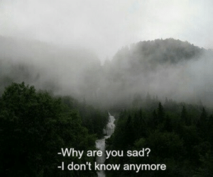 Sad, Why, and You: Why are you sad?  I don't know anymore