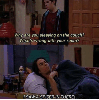 Memes, Spider, and Couch: Why are you sleeping on the couch?  What's wrong with your room?  I SAWA SPIDER IN THERE! Same Spencer
