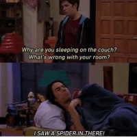 Memes, Spider, and Couch: Why are you sleeping on the couch?  What's wrong with your room?  SAWA SPIDER IN THERE! Same but with bees. Bees are just flying needles