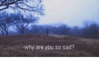Sad, Why, and You: -why are you so sad?