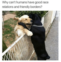 😍😘 (@tank.sinatra): Why can't humans have good race  relations and friendly borders? 😍😘 (@tank.sinatra)