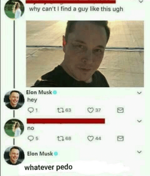 Beer, Dank, and Memes: why can't I find a guy like this ugh  Elon Musk  hey  no  5  Elon Musk  LIS  whatever pedo Dont agitate Elon by Aussie_for_beer FOLLOW HERE 4 MORE MEMES.