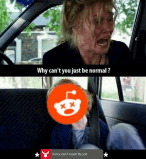 Reddit, Sorry, and Can: Why can't you just be normal ?  Sorry, can't reach Reddit Why cant you just be normal? (i.redd.it)