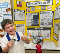 Science, Elon Musk, and Dig: WHY CHICKS DIG ME  29  l 2.5  PURPOSE  PROCEDURE  MATERIALS  HYPOTHES  ogs  HYPOTHESISe  GRAPH Elon Musk wins his first Science Fair, (1980)