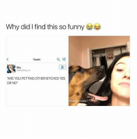 """so it's winter break and i plan to lose weight!!! yay!!! im about to go for a really long walk with my dog and today i'm gonna try to consume less than 1,300 calories —sara: Why did l find this so funny  Tweet  Sky  Sky Baby. co  """"ARE YOU PETTING OTHER BITCHES YES  OR NO""""  masturwate so it's winter break and i plan to lose weight!!! yay!!! im about to go for a really long walk with my dog and today i'm gonna try to consume less than 1,300 calories —sara"""