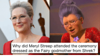 Meryl Streep: Why did Meryl Streep attended the ceremony  dressed as the Fairy godmother from Shrek?