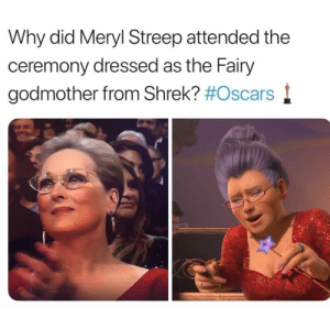Lmao😂: Why did Meryl Streep attended the  ceremony dressed as the Fairy  godmother from Shrek? Lmao😂