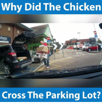 Yeah wasn't expecting that...: Why Did The Chicken  Cross The Parking Lot? Yeah wasn't expecting that...