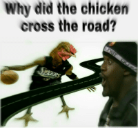 Why he do him like that😳.....🍩c: Why did the chicken  cross the road? Why he do him like that😳.....🍩c