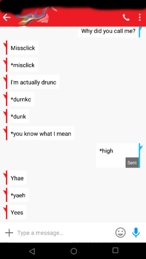 Dunk, Mean, and Why: Why did you call me?  Missclick  misclick  I'm actually drunc  *durnkc  *dunk  *you know what I mean  *high  Sent  Yhae  *yaeh  Yees  Type a message... .