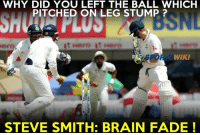 Memes, Steve Smith, and Brain: WHY DID YOU LEFT THE BALL WHICH  PITCHED ON LEG STUMP  iero  WIKI  STEVE SMITH: BRAIN FADE Steven BRAINFADE Smith !  Watch the video here -> https://goo.gl/AQ9LLI