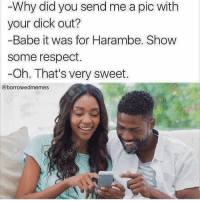 Dick Out: Why did you send me a pic with  your dick out?  -Babe it was for Harambe. Show  Some respect.  Oh. That's very sweet.  @borrowed memes