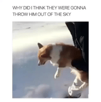 <p>I just got video-BAITED<br/></p>: WHY DIDITHINK THEY WERE GONNA  THROW HIM OUT OF THE SKY <p>I just got video-BAITED<br/></p>