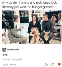 Dank, Demi Lovato, and The Hunger Games: why do demi lovato and nick jonas look  like they just won the hunger games  bitchy code  Omg  Source: bitchycode  33,851 notes