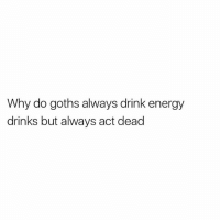 Energy, British, and Goths: Why do goths always drink energy  drinks but always act dead One of life's greatest mysteries...
