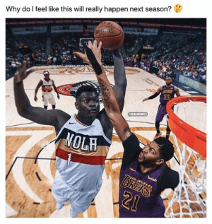 Get hype! 🔥: Why do I feel like this will really happen next season?  23  NOL  @NBAMEMES  NOLH  wish  7LOS ANGELES  LAKERS  21 Get hype! 🔥