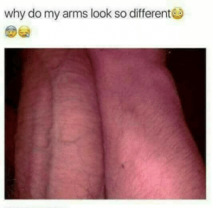 7mangoes:  thottimus-prime:  bitchycode:  omg  I want to cry  this post gave me asthma   this post made me hungry: why do my arms look so different 7mangoes:  thottimus-prime:  bitchycode:  omg  I want to cry  this post gave me asthma   this post made me hungry