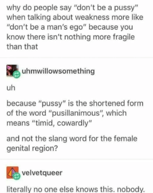 "Dank, Memes, and Pussy: why do people say ""don't be a pussy""  when talking about weakness more like  ""don't be a man's ego"" because you  know there isn't nothing more fragile  than that  uhmwillowsomething  uh  because ""pussy"" is the shortened form  of the word ""pusillanimous"", which  means ""timid, cowardly""  and not the slang word for the female  genital region?  velvetqueer  literally no one else knows this. nobody. Fun Fact by AntiMatterLite MORE MEMES"