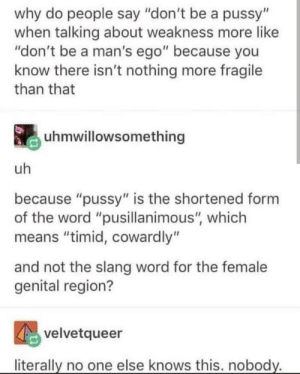 "Pussy, Word, and One: why do people say ""don't be a pussy""  when talking about weakness more like  ""don't be a man's ego"" because you  know there isn't nothing more fragile  than that  uhmwillowsomething  uh  because ""pussy"" is the shortened form  the word ""pusillanimous"", which  means ""timid, cowardly""  and not the slang word for the female  genital region?  velvetqueer  literally no one else knows this. nobody. Why are u bogging me."